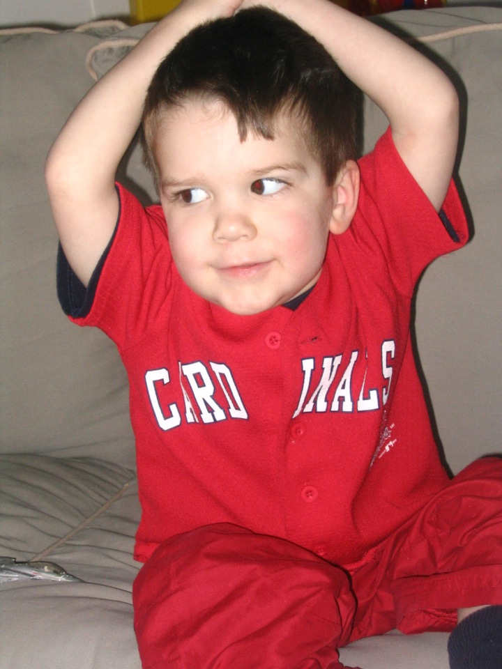 Our Cardinals Fan