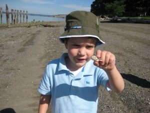 Holding a little crab on Sunnyside Beach in Steilacoom
