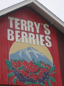Terry's Berries in Puyallup, WA
