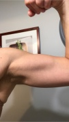 arm muscles 2-19